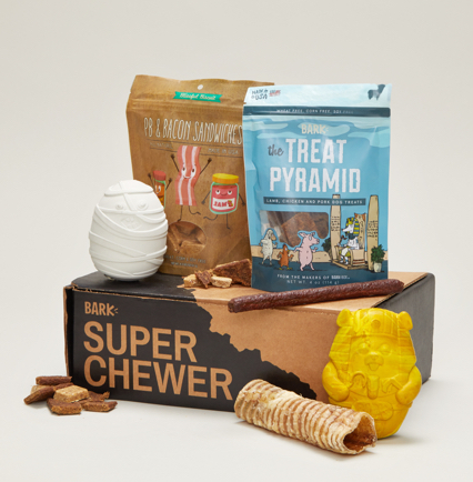 super chewer subscription box for pets