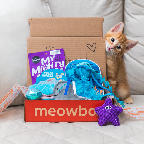Meowbox subscription box for cats