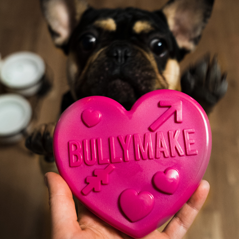 BullyMake subscription box for dogs