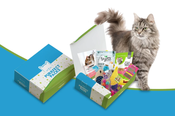 purrfect pack subscription box for cats