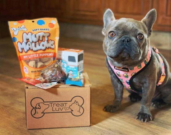 treatluv subscription box for pets