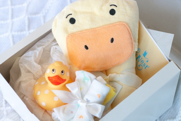 9 to Nest Best Pregnancy & Maternity Subscription Boxes